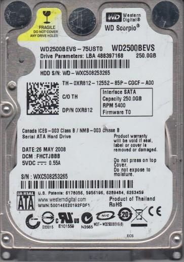 WXC508253265