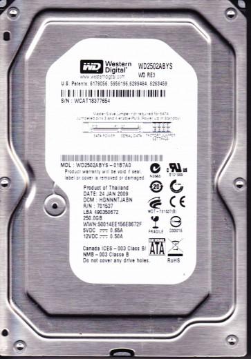 WD2502ABYS-01B7A0, DCM HGNNNTJABN, Western Digital 250GB SATA 3.5 Hard Drive