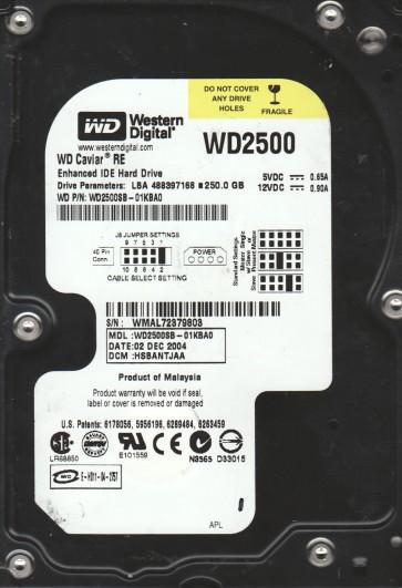 WD2500SB-01KBA0, DCM HSBANTJAA, Western Digital 250GB IDE 3.5 Hard Drive