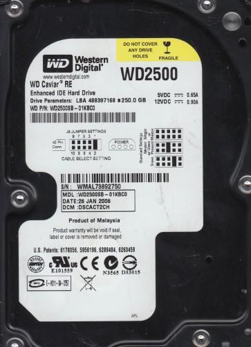 WD2500SB-01KBC0, DCM DSCACT2CH, Western Digital 250GB IDE 3.5 Hard Drive