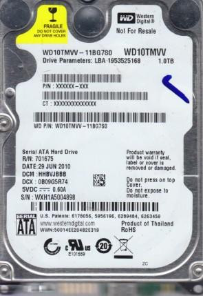 WXH1A5004898
