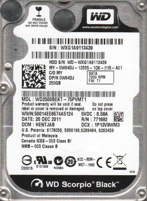 WD2500BEKT-75PVMT1, DCM HENTJAB, Western Digital 250GB SATA 2.5 Hard Drive